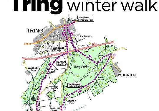 WINTER WALK IN TRING