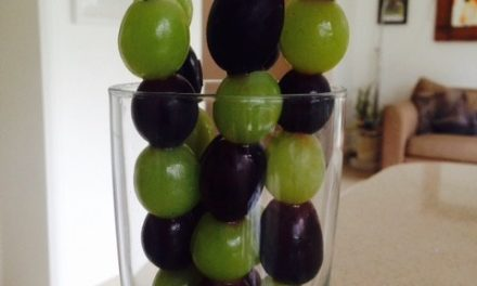 Grapesicles – Frozen Grape Pops