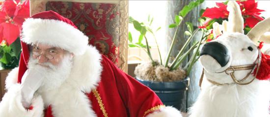 Santa-BullHotel
