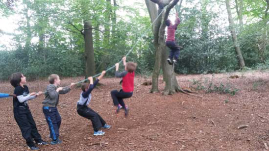ChilternForestSchool