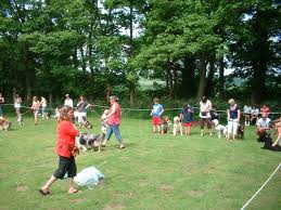 BEACONSFIELD COUNTRY FAYRE DOG SHOW