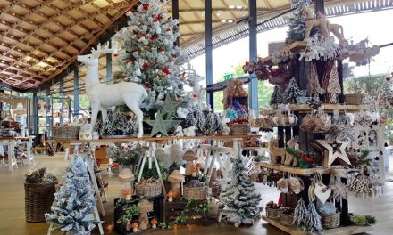 FREE ENTRY TO SAVILL GARDEN THIS DECEMBER