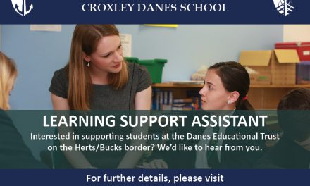 Learning Support Assistant Role