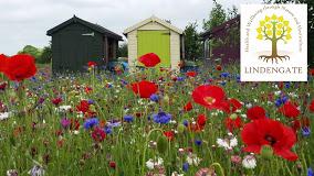 Volunteer Work in beautiful gardens