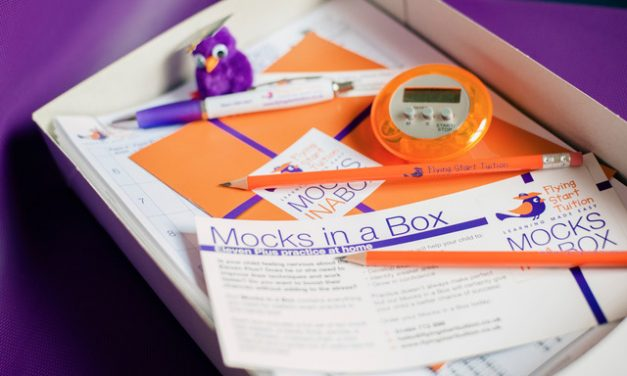 MOCKS IN A BOX – SPECIAL OFFER!