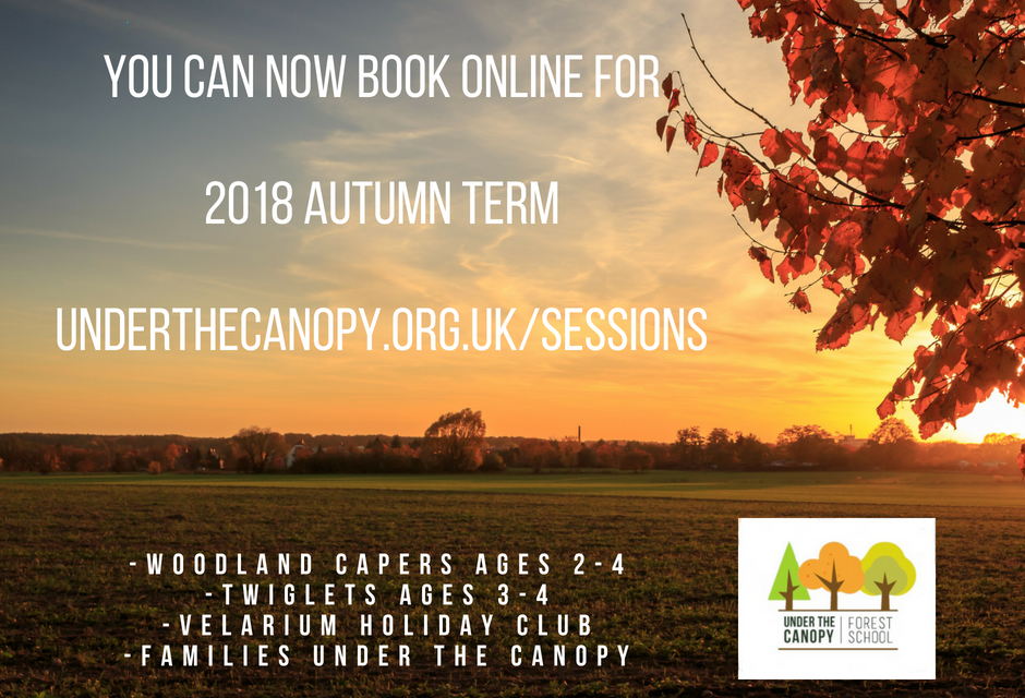 Autumn Term bookings now open