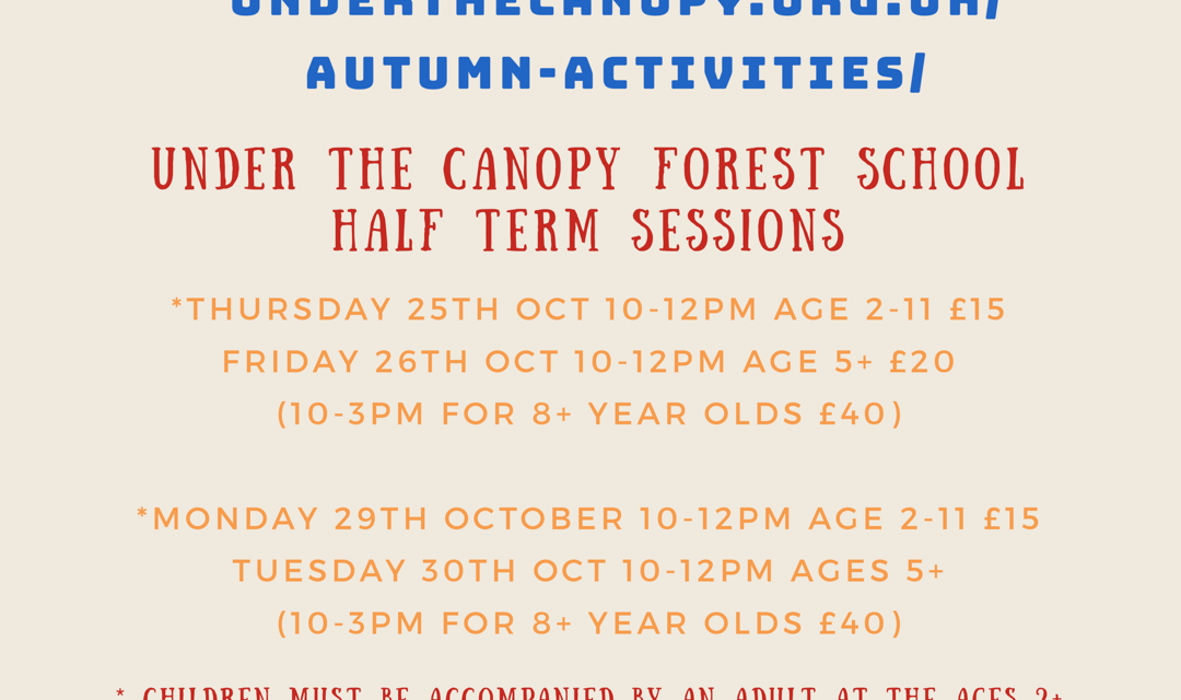 Half Term Stay & Play and Holiday Club