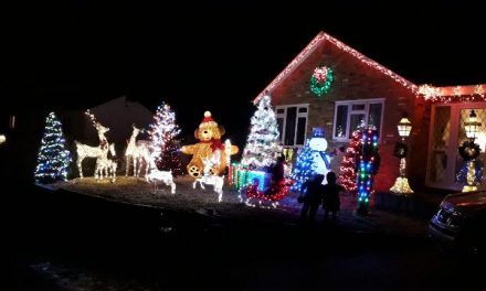 Christmas light display raising money for Macmillan Cancer Support