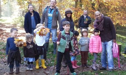 FREE GUIDED WOODLAND WALKS