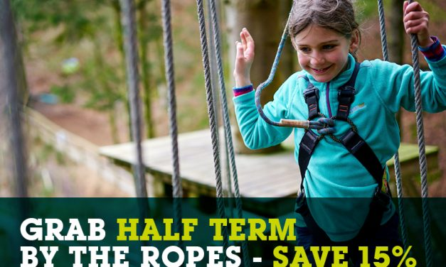 SAVE 15% ON YOUR GO APE ADVENTURE THIS HALF TERM