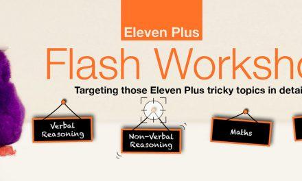 90 Minute Flash Workshops