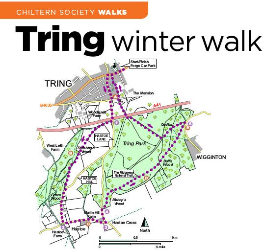 Tring Walk