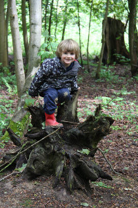 tots-in-the-woods-outdoor-toddler-group-6