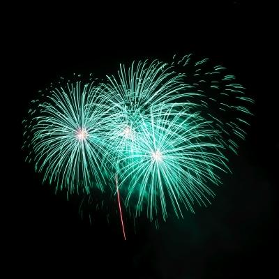 BONFIRE & FIREWORKS DISPLAYS 2013