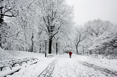 Walk off your Christmas Lunch with a Winter Walk