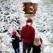 Fun Festive Outings this Christmas