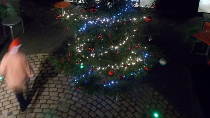 A Magical Minpins Christmas