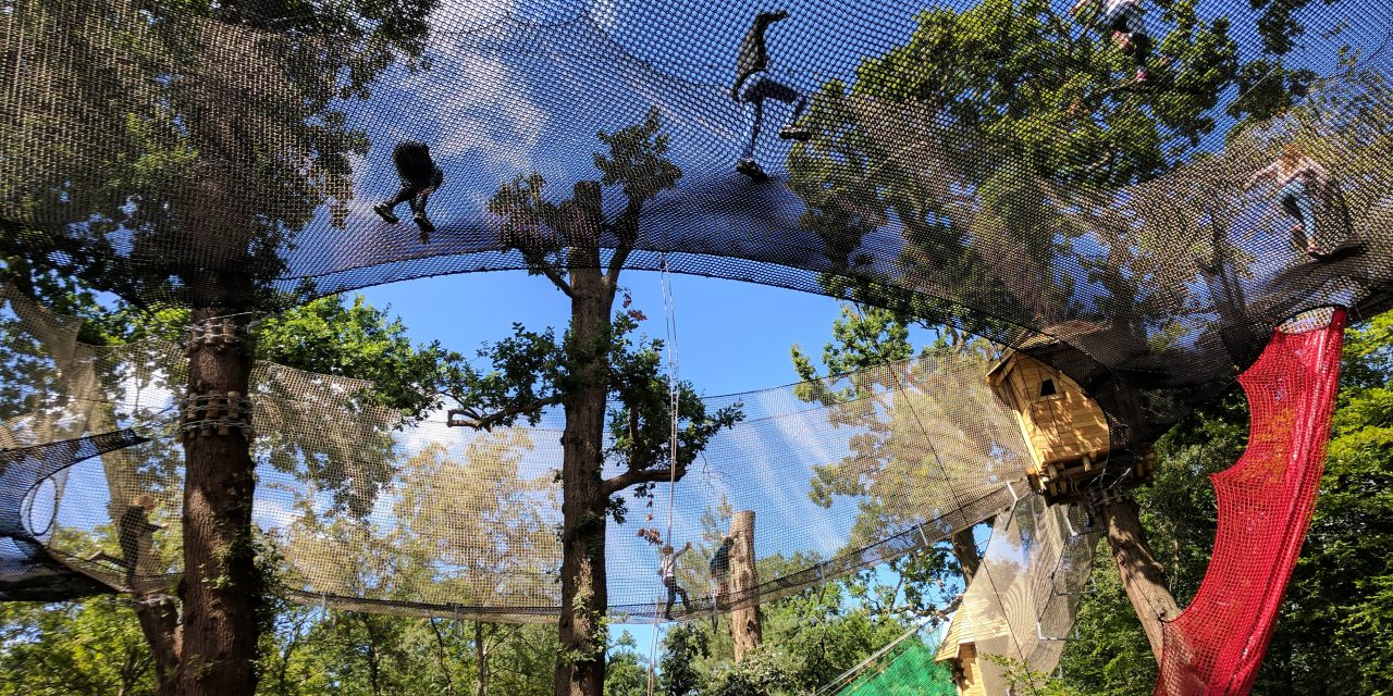 REVIEWED: The Net Kingdom at Black Park