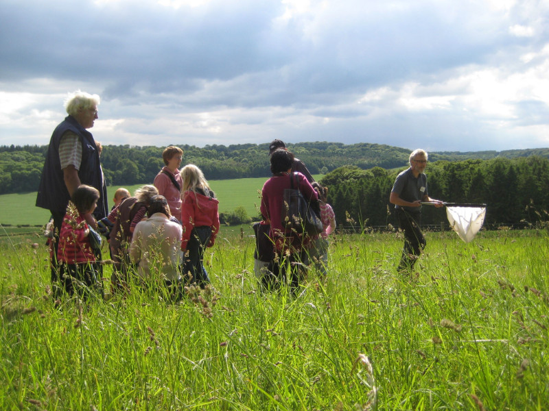 Chilterns Walking Festival, 19th May – 3rd June 2018