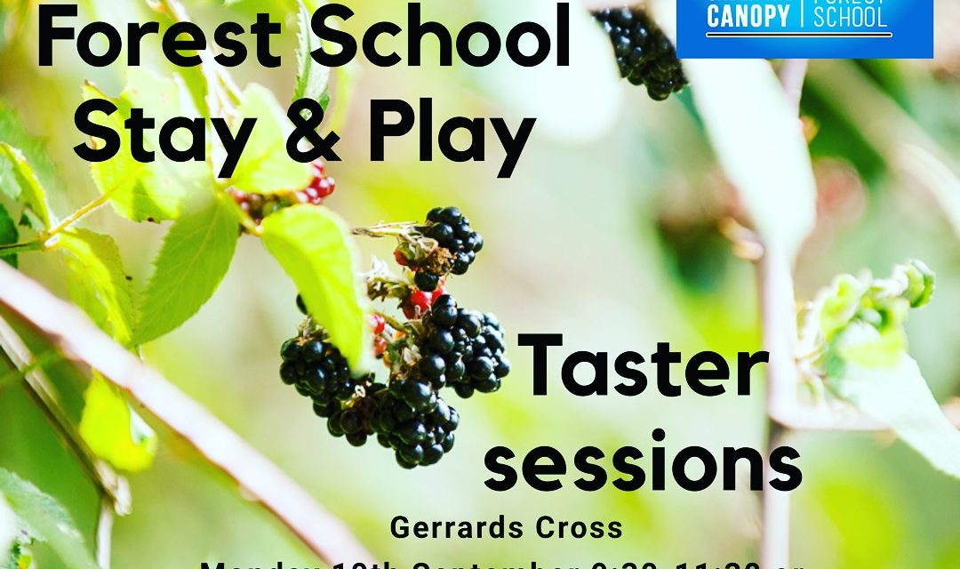 Taster session Forest School Stay & Play