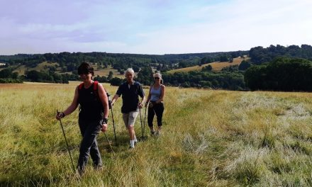 Chilterns Walking Festival, 5th – 20th October 2019