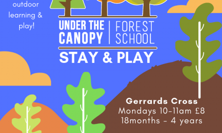 Forest School Stay & Play