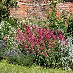 Astleham-Gertrude-Jekyll-garden-600px.jpg
