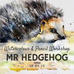 Mr-Hedgehog.png