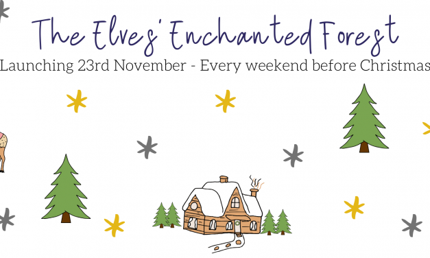 New Nordic Festive Experience AT PETERLEY MANOR