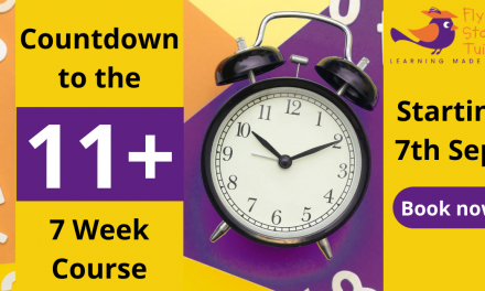 Year 6 Countdown to the 11+ Course – Reader Offer