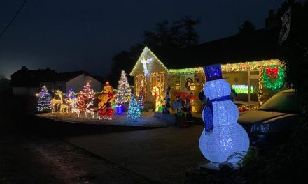 Festive Lights in aid of Macmillan Cancer
