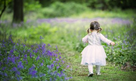 10% OFF A BLUEBELL SHOOT WITH REBECCA FITCH PHOTOGRAPHY