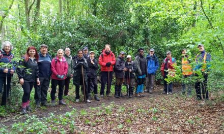 Discover hidden gems at The Chilterns Walking Festival